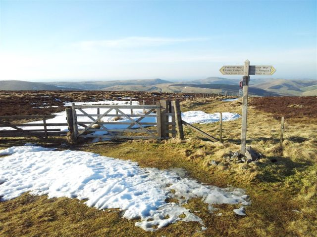 Looking north over the Border Fence on the Border Ridge & Pennine Way. Scotland 10ft away.