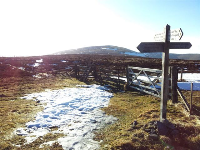 The sign points to Windy Gyle, well sort of.