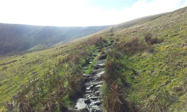 Straight line path angling west up to Bowscale Fell - 4.50pm