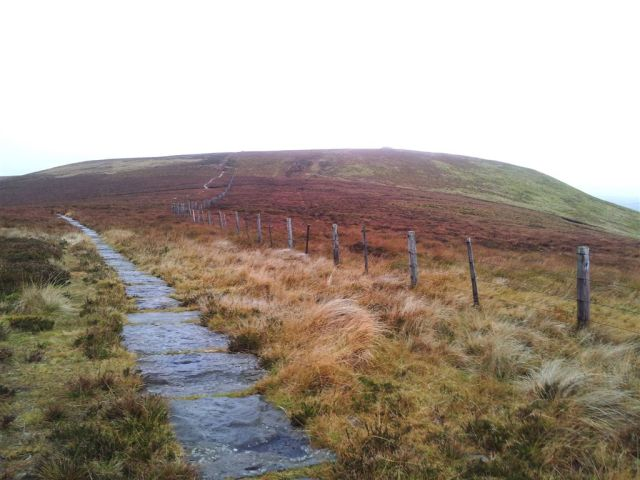 Looking up the path to Windy Gyle summit briefly appearing