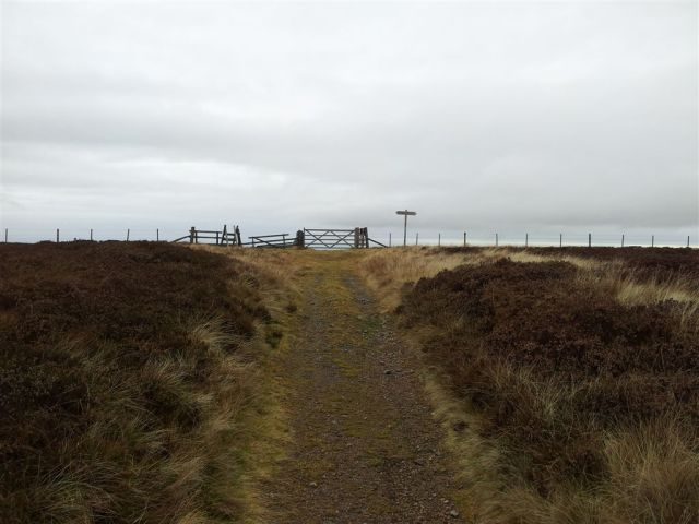 Nearly at the Border Fence on the Pennine Way & Border Ridge