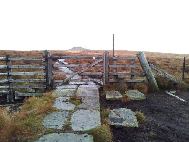 Top of Windy Gyle ahead over the stile