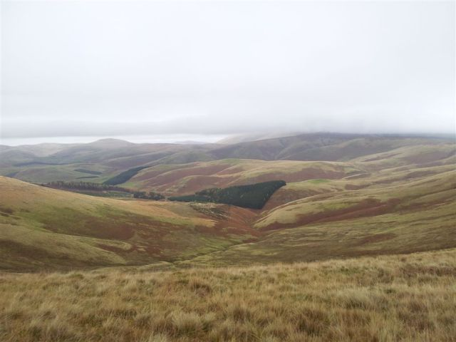 Views north over the Schill & Cheviot