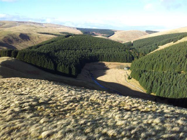 Always nice to see this view down to Fairhaugh. The Border Ridge on the horizon