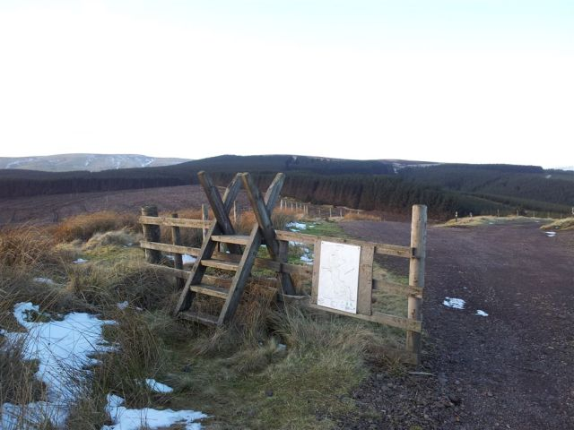 Leaving the Kidland forest, final sight of Windy Gyle on the horizon