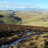 Fifty Shades of Green - Cheviots Walk from Alwinton via the Pass Peth path, Shillmoor, Shillhope Law, The Middle and Clennell St (13.5 miles)