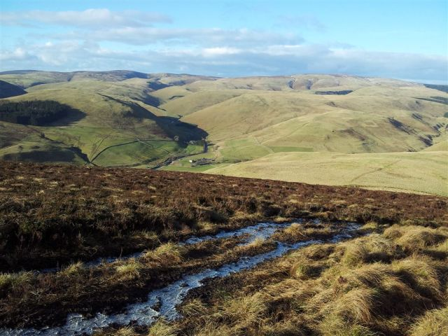Lovely view up the Upper Coquet valley  descending Shillhope