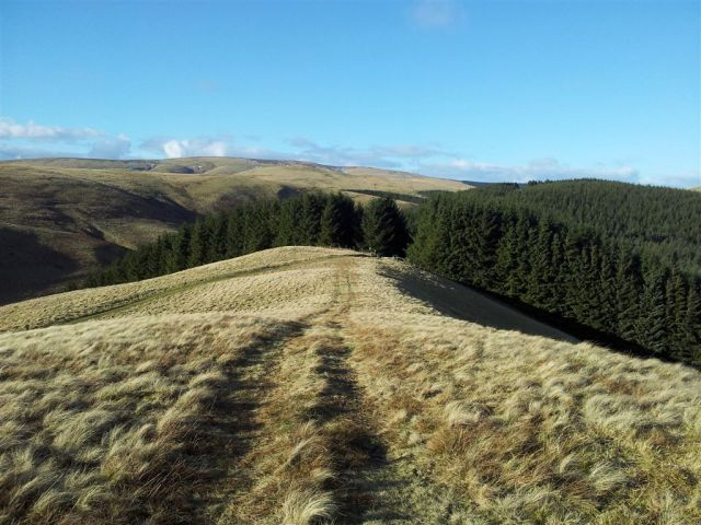 Route down to the stile into the Kidland trees