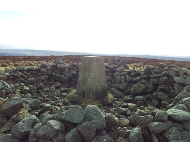 Shillhope Law summit cairn