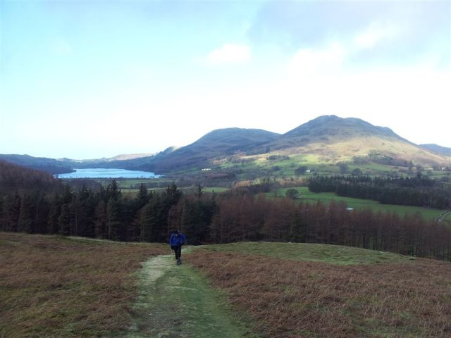 Through the trees, Loweswater & Low Fell on the horizon