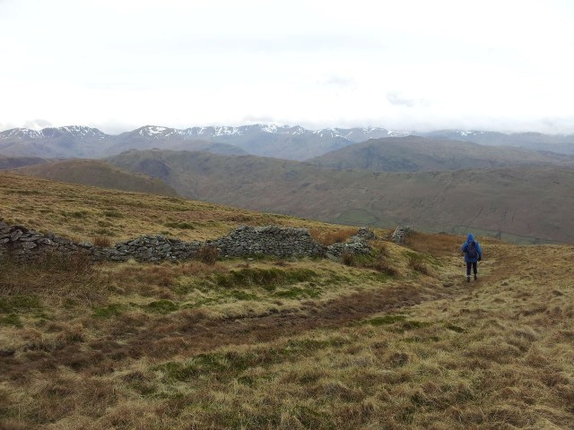 North Eastern Wainwrights, Bonscale & Arthurs Pike, Loadpot Hill, Wether Hill & Pikewassa_16