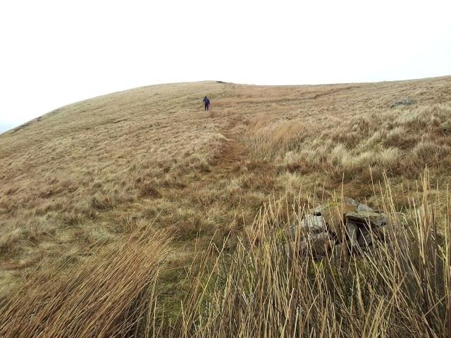 North Eastern Wainwrights, Bonscale & Arthurs Pike, Loadpot Hill, Wether Hill & Pikewassa_35