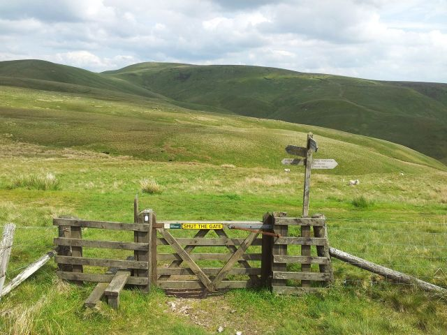 Windy Gyle from Wedder Leap, Coquet Valley, Cheviots_16