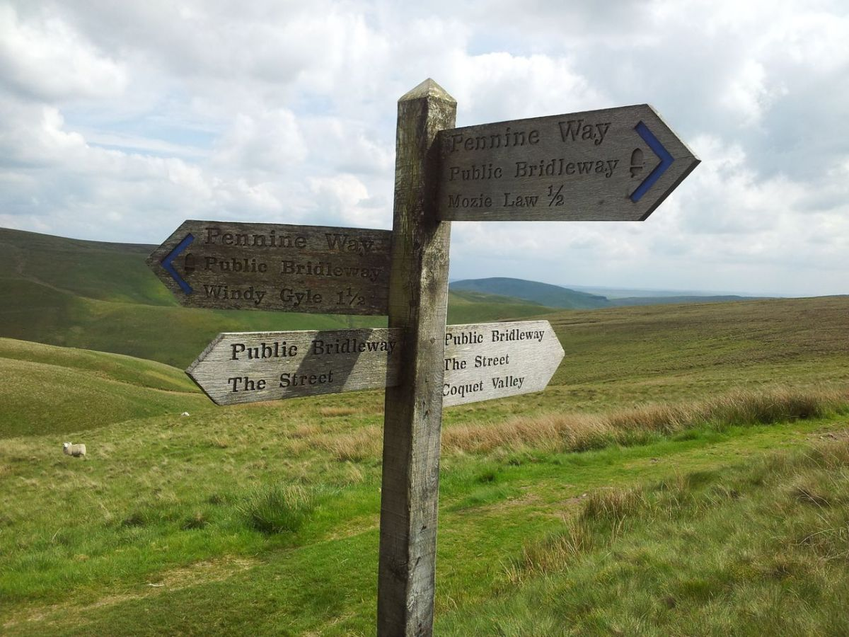 Cheviots Coquet Valley Walk from Wedder Leap, Barrowburn - The Street, Mozie Law, Windy Gyle, Clennell St, The Middle, Fairhaugh, Kyloe Shin and Shillhope Law (13 miles)