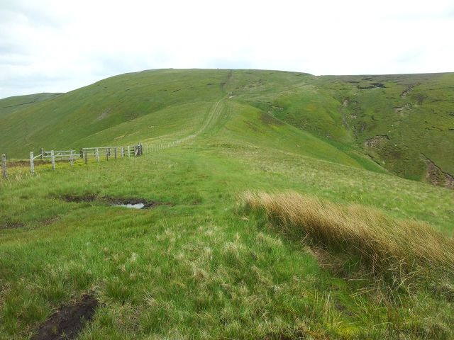 Windy Gyle from Wedder Leap, Coquet Valley, Cheviots_19