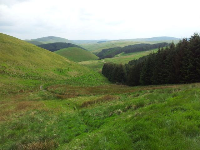 Windy Gyle from Wedder Leap, Coquet Valley, Cheviots_28