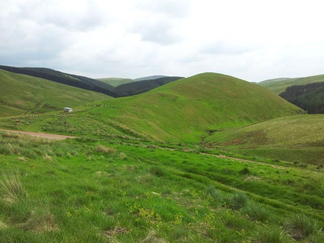 Windy Gyle from Wedder Leap, Coquet Valley, Cheviots_29