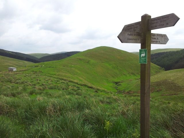 Windy Gyle from Wedder Leap, Coquet Valley, Cheviots_30