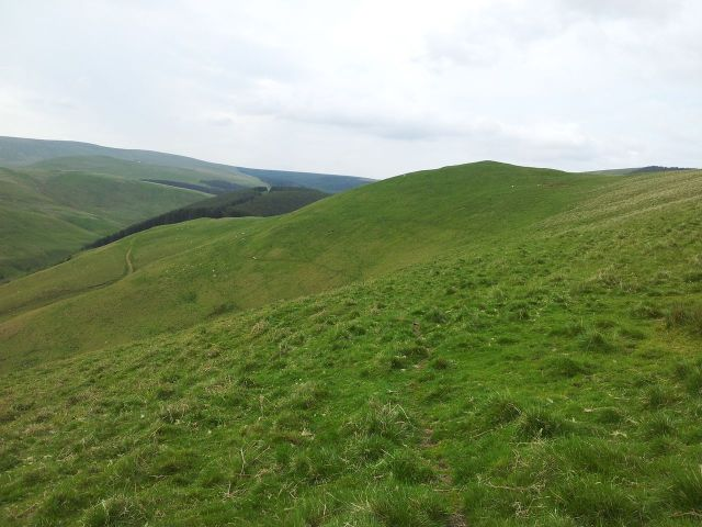 Windy Gyle from Wedder Leap, Coquet Valley, Cheviots_36