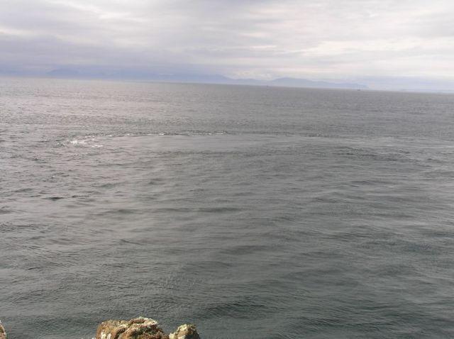 Whale spotting on Rubha Hunish