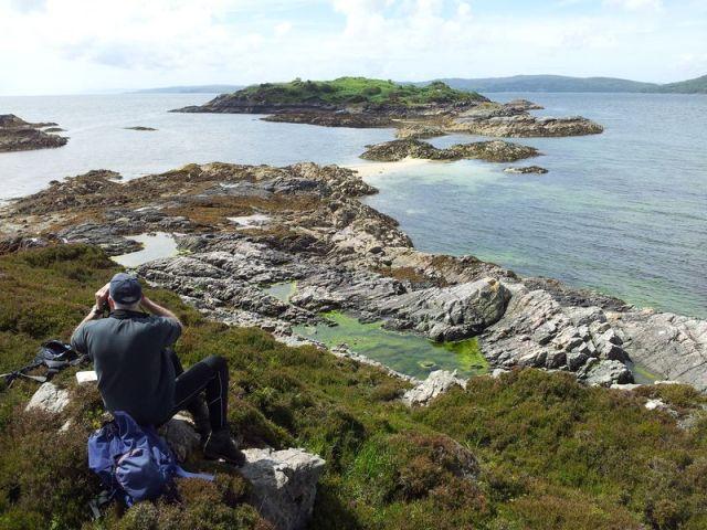 Sandaig Island seal spotting - Copy