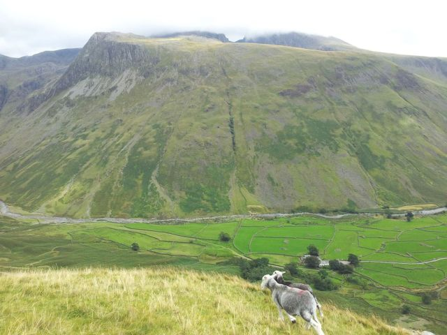 Gable, Kirk Fell & Wasdale Head from Seathwaite_13