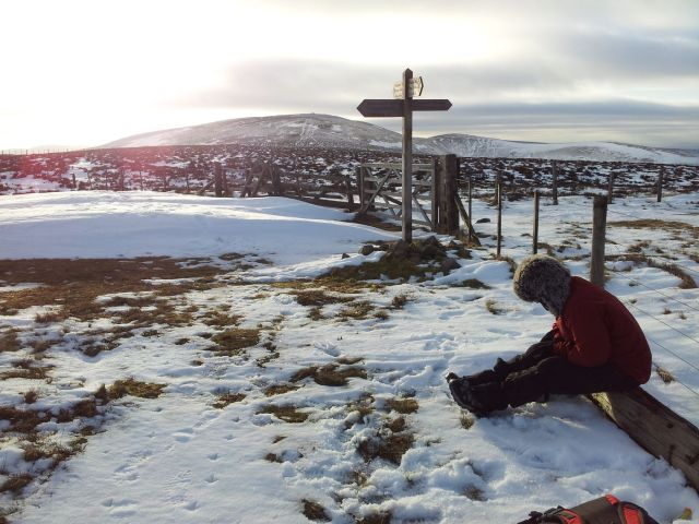 Windy Gyle in the snow Feb 2015 (20)