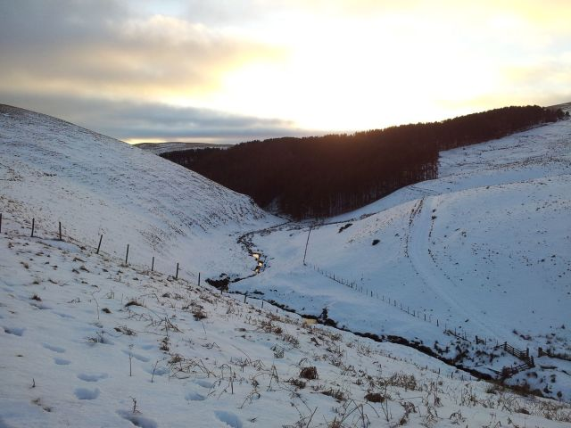 Windy Gyle in the snow Feb 2015 (22)