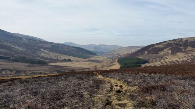 The Cheviot via the Bizzle from Langleeford_6