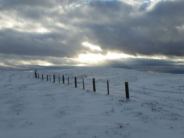Wintry Windy Gyle walk March 2016_10