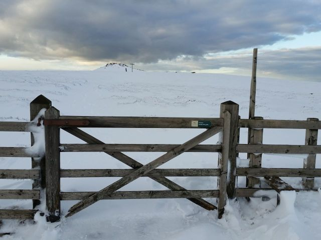 Wintry Windy Gyle walk March 2016_11