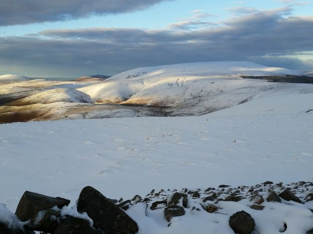 Wintry Windy Gyle walk March 2016_14