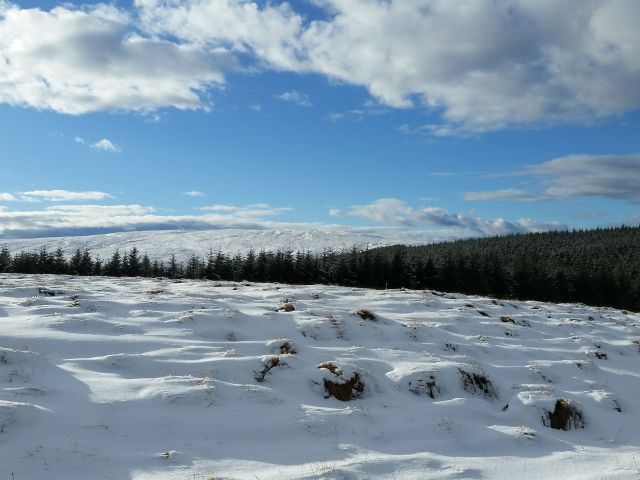 Wintry Windy Gyle walk March 2016_4