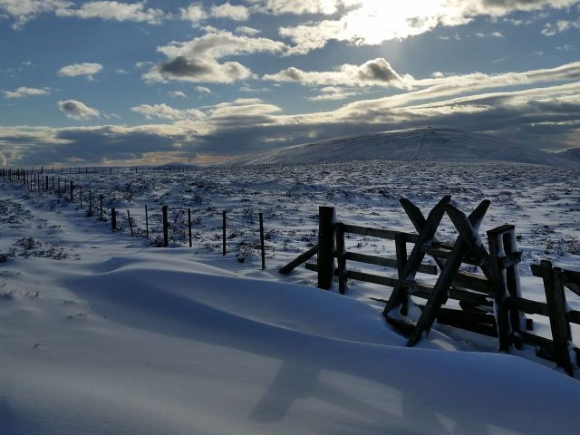 Wintry Windy Gyle walk March 2016_7