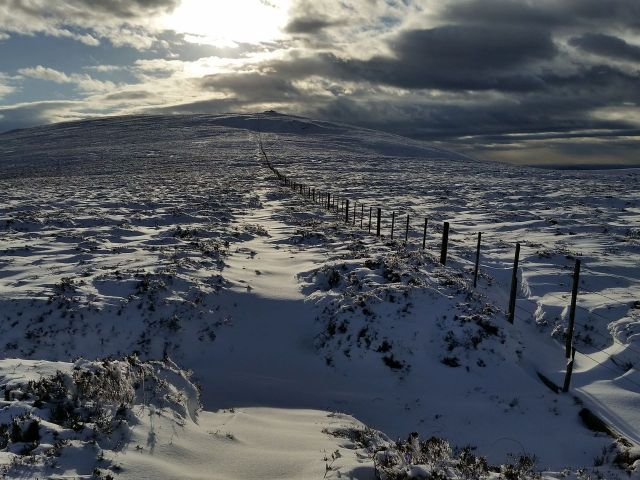 Wintry Windy Gyle walk March 2016_9