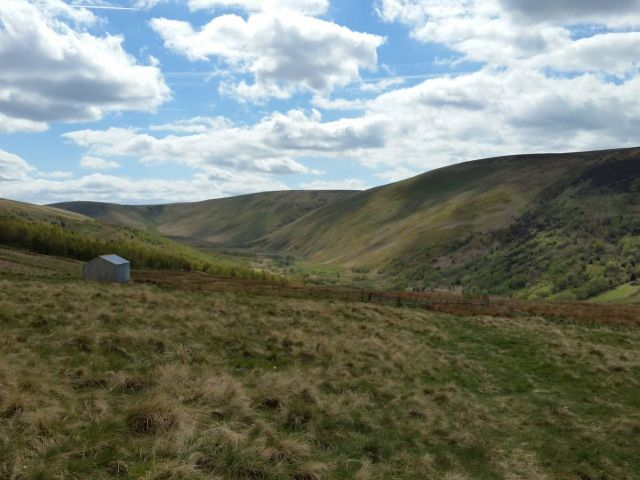 The Cheviot via the Hen Hole from Langleeford_16