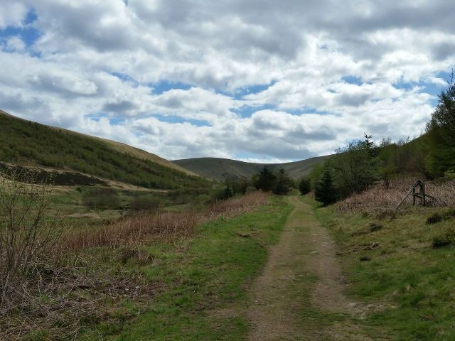 The Cheviot via the Hen Hole from Langleeford_17